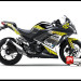 Decal Sticker NINJA 250 Fi Speed Master Team Moto GP