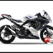 Jual Sticker Decal NINJA 250 Injeksi Putih Grey Monster Energy
